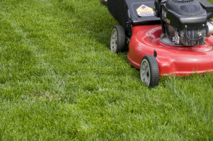 late-fall-lawn-care-checklist